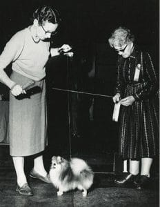 The Journey of Ruth Beam