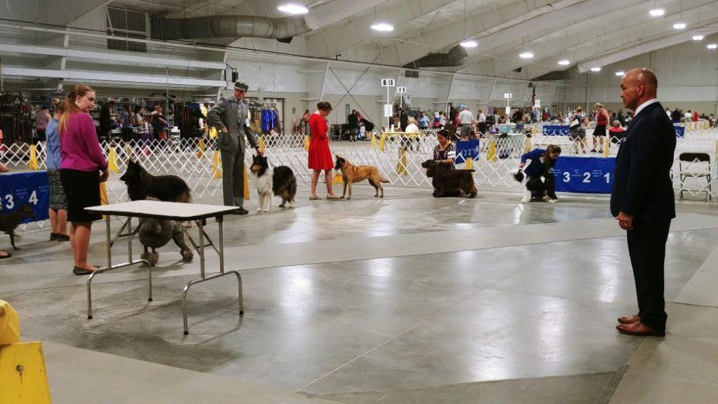 Colorado Springs Kennel Club