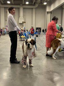 Southeastern Iowa Kennel Club