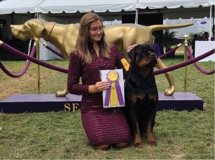 Garden Breeds & Varieties | Owner-Handled Dogs Are Among WKC Best of Breed Winners