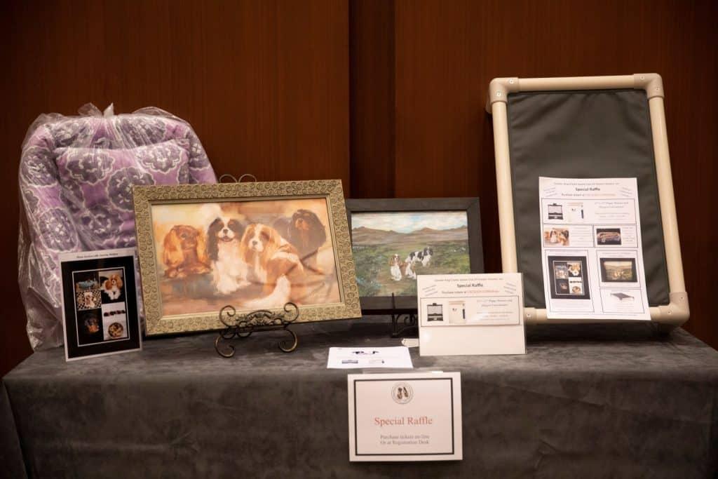Cavalier King Charles Spaniel Club Specialty Shows